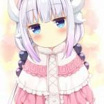 【二次・ZIP】カンナちゃん可愛すぎてマジやばくね?の画像まとめ《小林さんちのメイドラゴン》