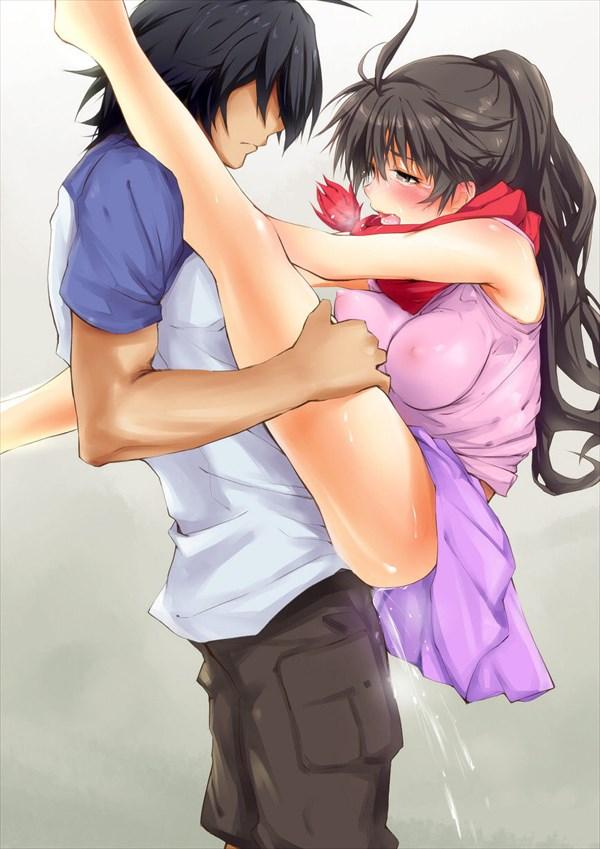 【二次】男に抱きつき駅弁セックスしてる女の子のエロ画像まとめ